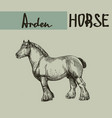 farm draft horse arden vector image