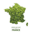 green leaf map of france vector image vector image