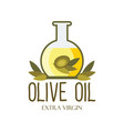 olive oil logo with text space vector image