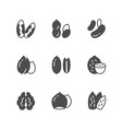set icons nuts vector image