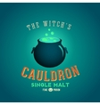 boiling and glowing witch cauldron vector image vector image