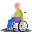 flat disabled grandfather vector image