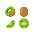 kiwi fruit icon half vector image vector image