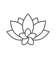 spa salon flowers linear icon vector image vector image