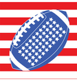 usa football flag 1 vector image