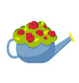 watering can vase with flowers concept isolated on vector image