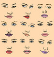 woman face female facial portrait of vector image