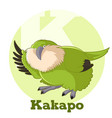 abc cartoon kakapo vector image vector image