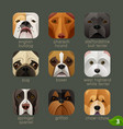 animal faces for app icons-dogs set 2 vector image vector image