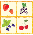 Berry and fruits seamless pattern vector image