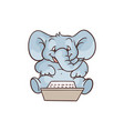 cartoon elephant sitting with laptop knees vector image vector image