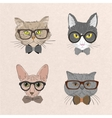 Collection of hipster cats vector image vector image