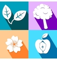 Four colorful icons with nature elements vector image vector image
