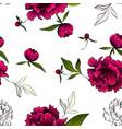 seamless pattern red luxury peonies vector image vector image