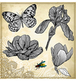 set of hand drawing flower and butterfly vector image vector image