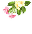 single tropical flower bouquet at top corner vector image vector image