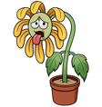Sunflower sad vector image