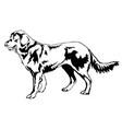 decorative standing portrait of dog shepherd vector image vector image