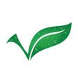 leaf fresh vector image vector image
