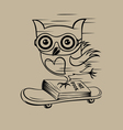 owl with skateboard vector image vector image