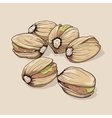 Pistachios Hand drawn vector image vector image