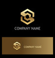 polygon gold letter s company logo vector image vector image