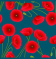 red corn poppy on indigo blue background vector image