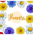 square banner greeting card with summer flowers vector image vector image