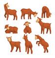 cute lamb character set funny farm animals vector image vector image
