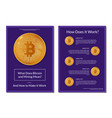 flyer design about bitcoin info vector image