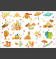 set of associated with autumn objects seasonal vector image