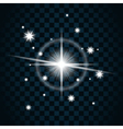 Shine star sparkle icon vector image vector image