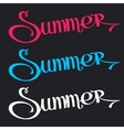Text Summer on Black Background vector image