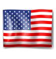 The USA flag vector image vector image