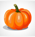 cartoon orange pumpkin vector image vector image