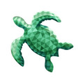 design of turtle in low poly style vector image