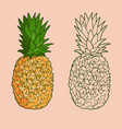isolated pineapples graphic stylized drawing vector image