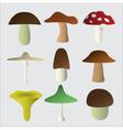 mushroom types symbols eps10 vector image vector image
