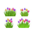 spring floral bundles of different widths set with vector image vector image