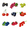 berries icon set vector image vector image
