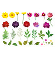 floral set collection with isolated colorful hand vector image