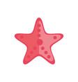 marine life starfish cartoon sea fauna animal vector image vector image