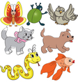 Set of baby toys vector image vector image