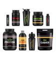 sport nutrition labels protein and amino bcaa vector image vector image