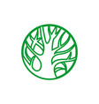 tree logo green concept icon vector image