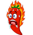 cartoon chili pepper vector image vector image