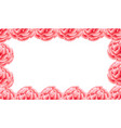 pink carnation flower frame vector image