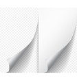 white page curl corner on blank sheet of paper vector image vector image