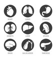 set with icons of human organs vector image