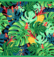 beautiful pattern leaves monstera and frogs vector image vector image